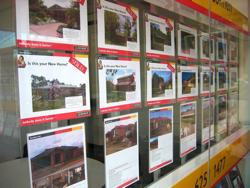 A photo of the front window of a real estate agent showing properties for sale